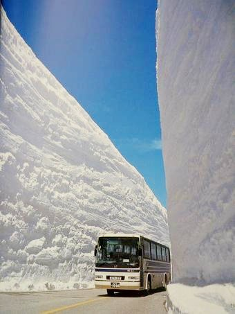 Киевлян просят не пользоваться личным транспортом во время снегопадов - Цензор.НЕТ 743