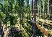 В парке «Юность» обустроят веревочный парк