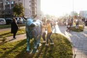 Возвращение «Украинских коровок»: на Виноградаре открыли выставку арт-объектов