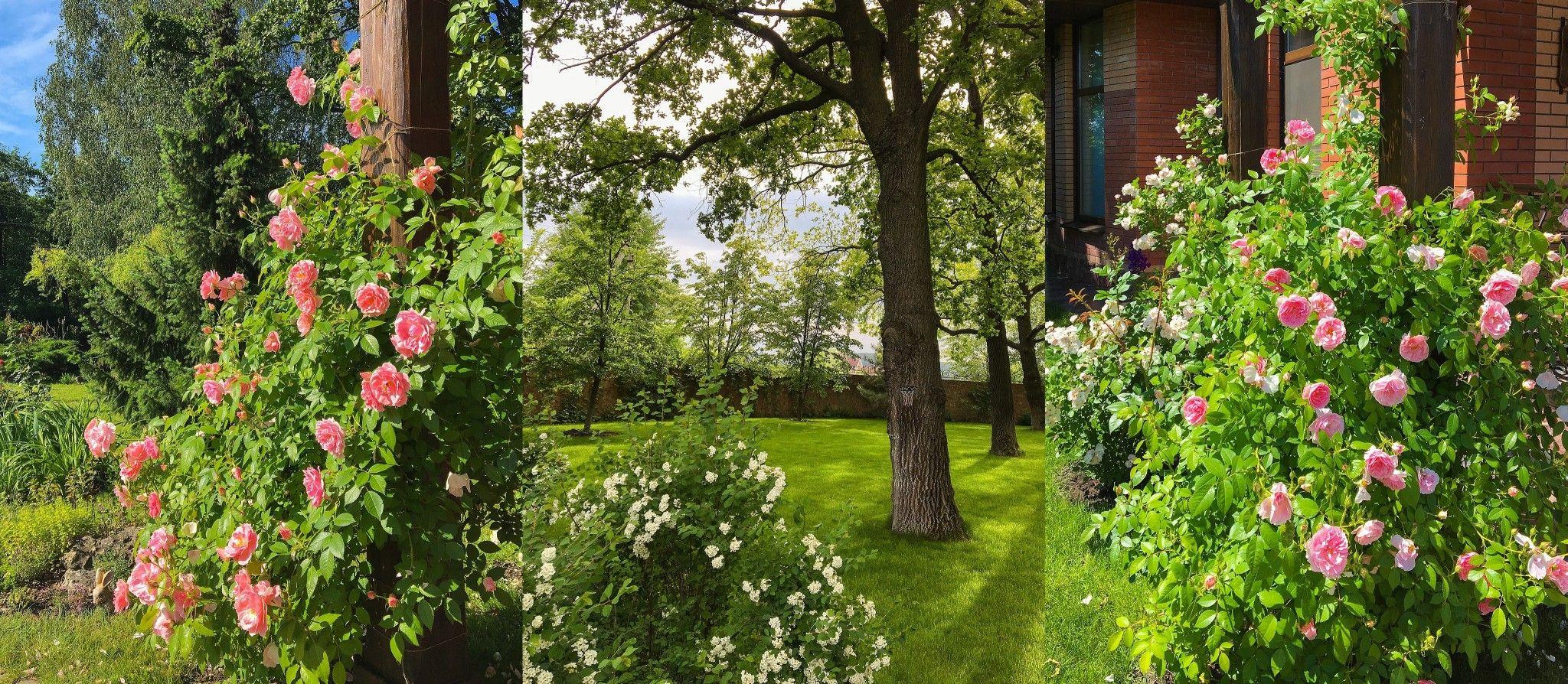 Дом W-4261812, Романков - Фото 41