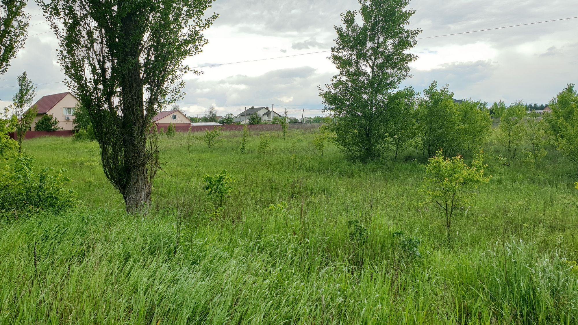 Земельный участок W-6038856, Заборье - Фото 3