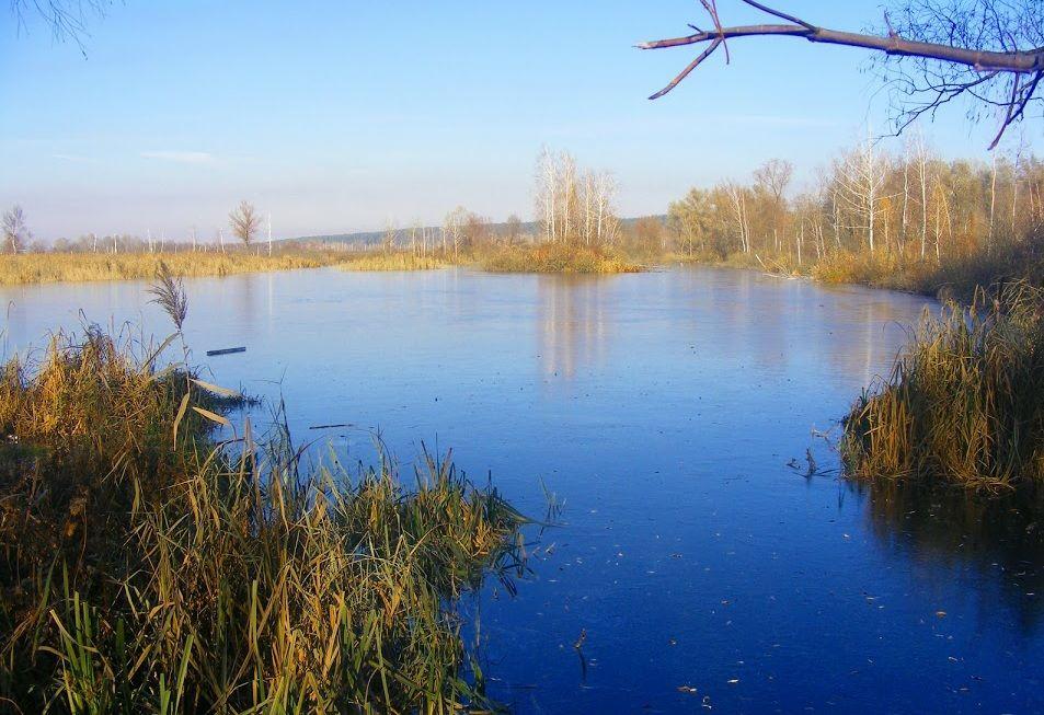 Земельный участок W-6089452, Пуховка - Фото 1