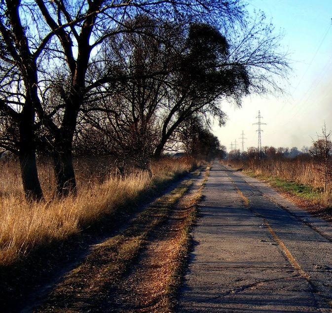 Земельный участок W-6089452, Пуховка - Фото 2